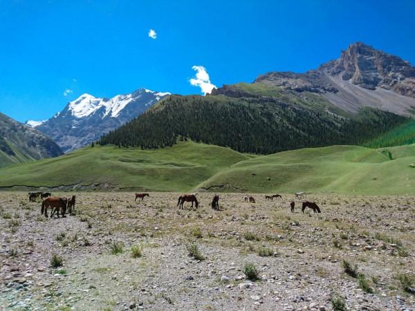 Kyrgyzstan-06