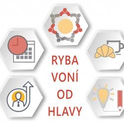 RybaVoniOdHlavy